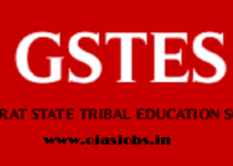 Gujarat State Trible Education Society (GSTES) has published an Advertisement for the below-mentioned Posts